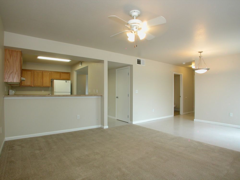 Kitchen/Family Room/Dining Area